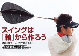 共同開発 第2弾 藤田コアスイング